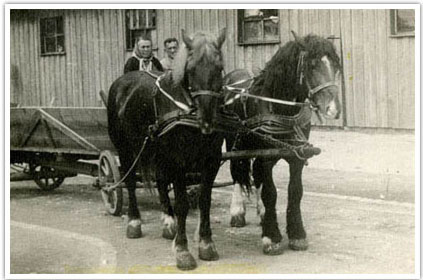06. Mr. and Mrs. Kihiczak on the wagon that brought them from Peremyshl, Ukraine to Augsburg, Germany in 1944. By 1945 thirty-two pairs of horses were owned by refugees and served the needs of the camp. When the Kihiczaks left for America in February 1949 this last pair of horses was sold for 5 American dollars
